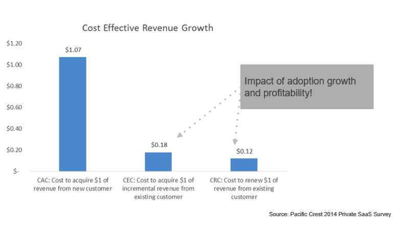 cost effective revenue growth