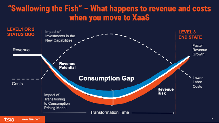 visualdepiction of TSIA's Fish model and impact on revenue and cost