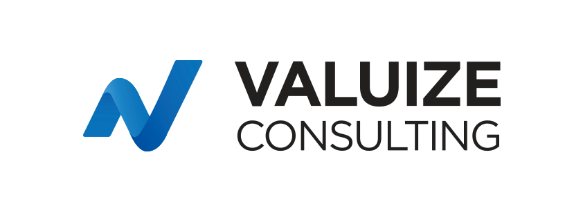 Valuize Consulting logo